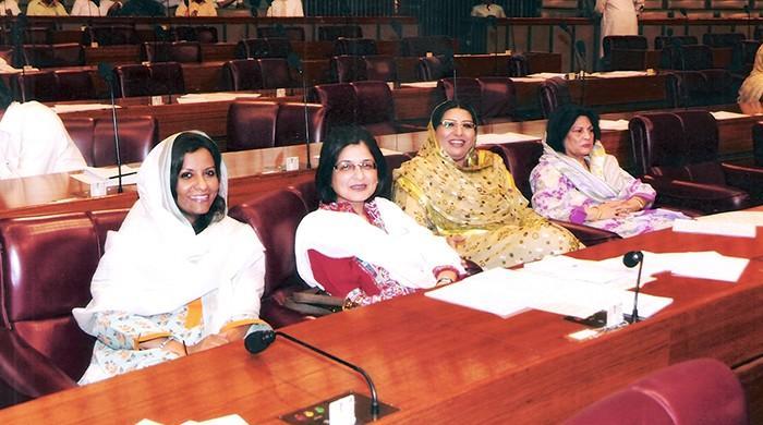 بااختیار سیاسی خواتین کی اکثریت لیکن کابینہ میں نمائندگی محض 5 فیصد؟