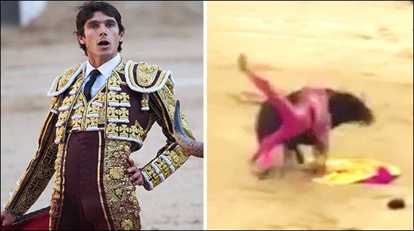 Statement Against Animals Angry Bull Thrown Away Bull Fighter