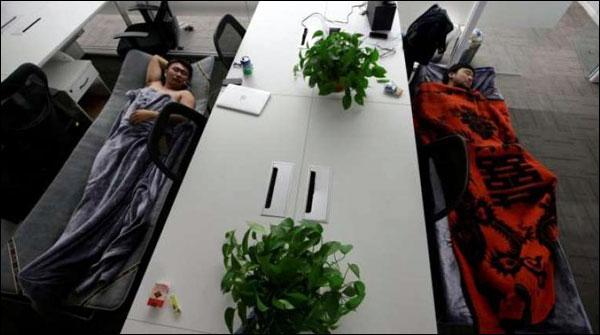چینی کمپنی کی انوکھی پیشکش، نوکری پر آئیں اور آرام  سے سوجائیں