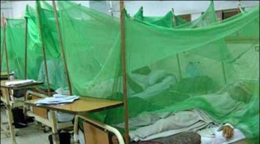 Karachi Aik Haftay Kay Douran 10 Afraad Dengue Ka Shikaar