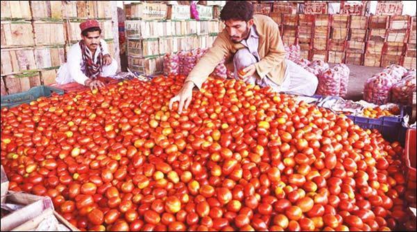 کراچی :ٹماٹر کی قیمت میں 20روپے فی کلو کمی