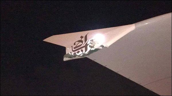 Uae Airline Met Accident In Singapore No Casualty Happened