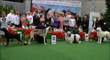Polandsalana International Dog Show Main 4200 Kutton Ki Shirkat