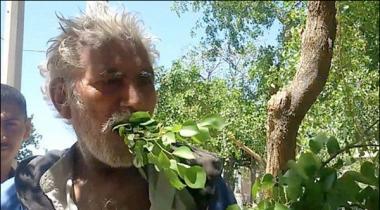 Gujranwala Main Darakhton Kay Patte Aur Lakriyan Khane Wale Baba