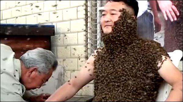 چینی شخص نے ہزاروں شہد کی مکھیوں سے خود کوڈھانپ لیا