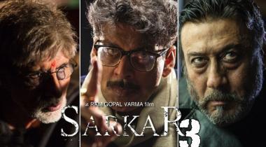 Sarkar 3 Bad Film With Weak Script
