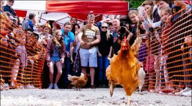 Bartania Mein Dilchasp World Hen Racing Championship