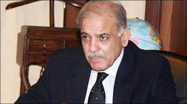 Shahbaz Sharif Pesh Hue To Na Bare Bhai Sath They Na Bhateejey