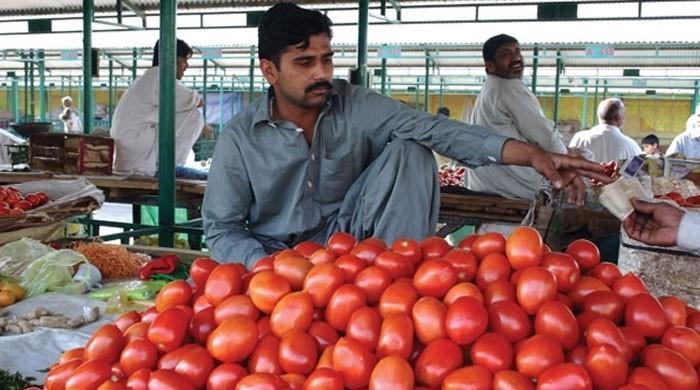 ٹماٹر کی قیمتیں آسمان پر، 200 روپے کلو تک فروخت جاری