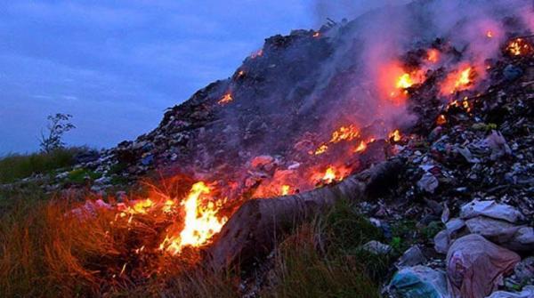 اسموگ: پنجاب میں فصلوں، ٹائروں اور کوڑے کو آگ لگانے پر پابندی عائد
