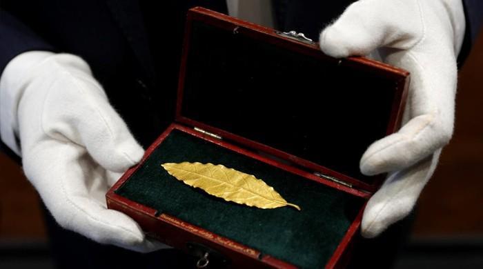 نپولین بونا پارٹ کے تاج سے نکالا گیا پتہ تقریباً پونے 8 کروڑ روپے میں نیلام