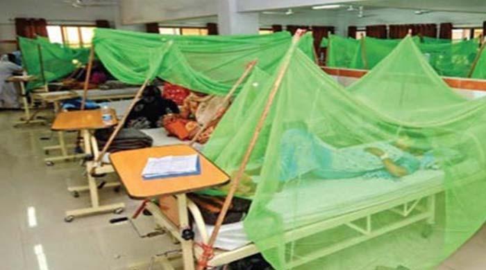 ڈینگی سے سب سے زیادہ اموات خیبرپختونخوا میں ہوئیں:عالمی ادارہ صحت