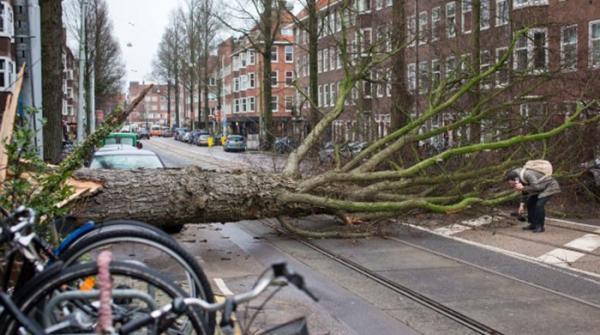 شمالی یورپ میں آندھی اور طوفان نے تباہی مچادی، 7 افراد ہلاک