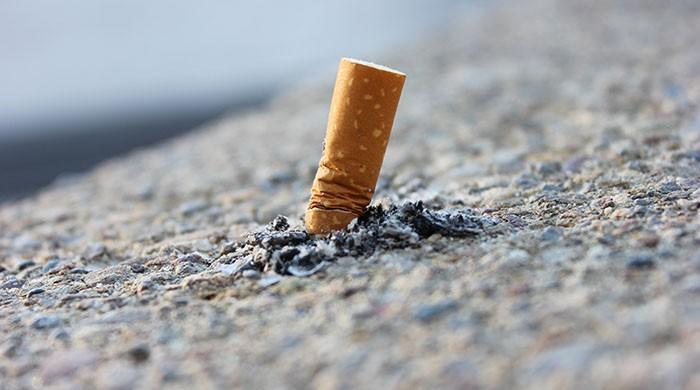 دبئی: سگریٹ کا ایک ٹکڑا پھینکنے پر 500 درہم جرمانہ