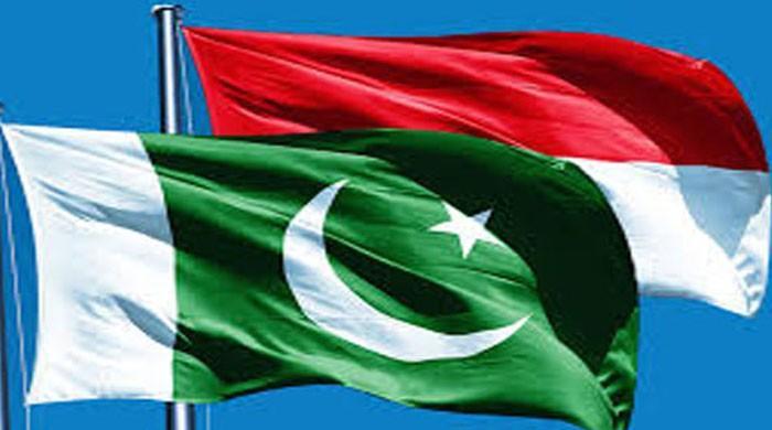پاکستان اور انڈونیشیا کی دو طرفہ تجارت میں 229 فیصد اضافہ