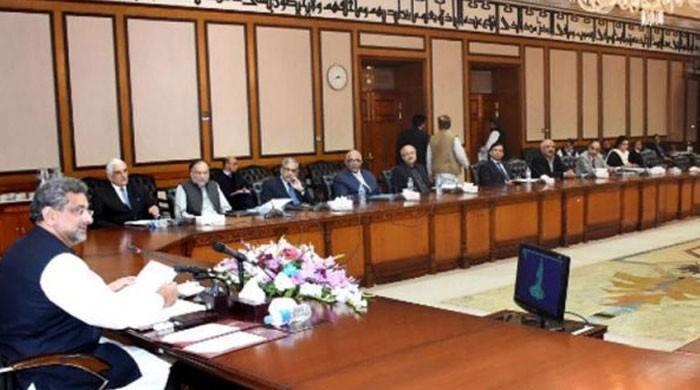 وفاقی کابینہ نے پاکستان اور اٹلی کے درمیان ایل این جی معاہدے کی منظوری دیدی
