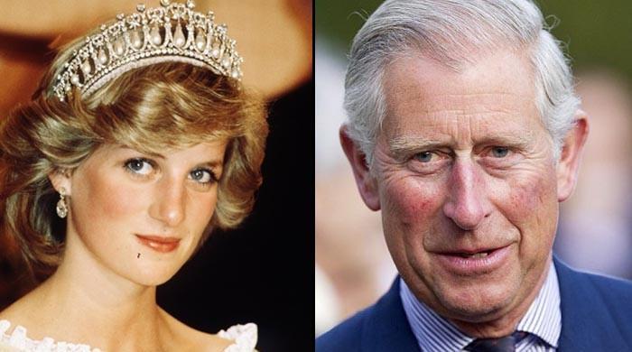 'شہزادہ چارلس موت کے بعد لیڈی ڈیانا کو دیوی جیسا درجہ ملنے پر ناخوش تھے'