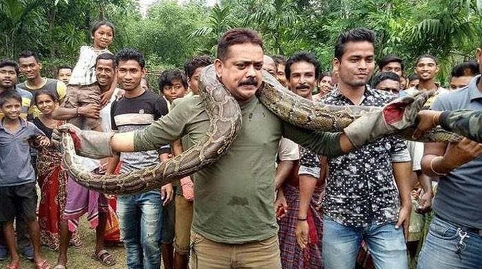 بھارت میں محکمہ جنگلات کے افسر کو اژدھے کے ساتھ سیلفی گلے پڑ گئی