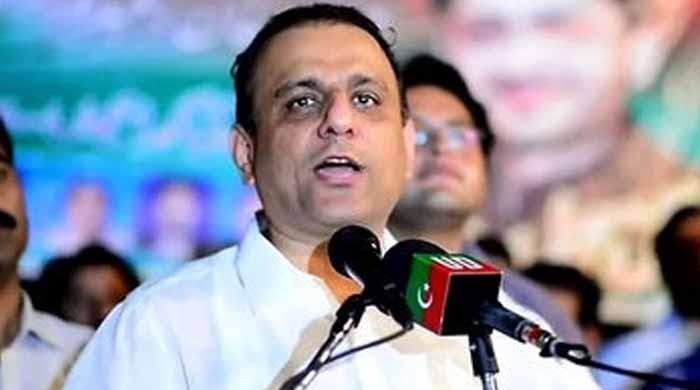 علیم خان 91 کروڑ کے مالک اور ایک ارب کے مقروض: اثاثوں کی تفصیلات