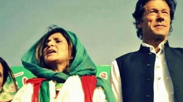 ڈولفن ڈوب گئی، فوزیہ قصوری کو تو بچالیں خان صاحب!