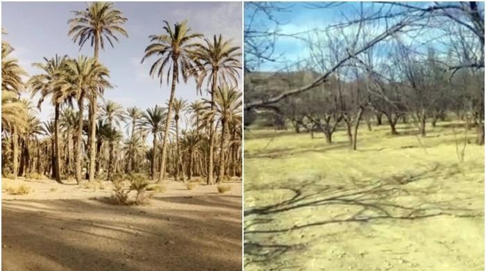 بلوچستان میں خشک سالی کے سائے مزید گہرے ہونے لگے!