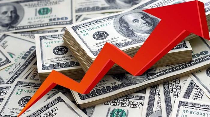 ڈالرتاریخ کی بلند ترین سطح 142 کو چھو کر 139 روپے 5 پیسے پر آگیا