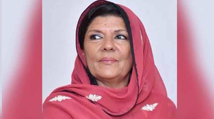 بیرون ملک جائیدادیں: علیمہ خان نے جرمانے کا 25 فیصد ایف بی آر میں جمع کرادیا