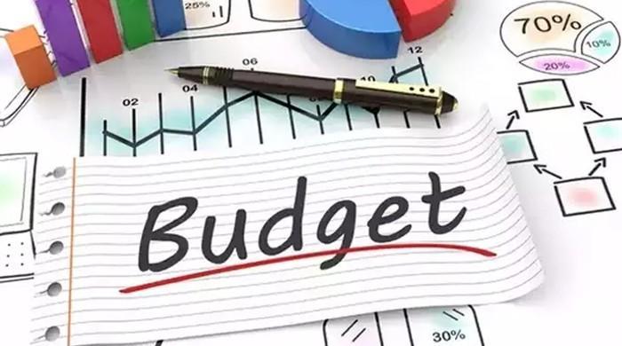 وفاقی بجٹ 20-2019 میں نان فائلرز پر ٹیکسز کا بوجھ  بڑھانے کی تجویز
