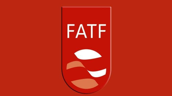ایف اے ٹی ایف کا پاکستان کی جانب سے اٹھائے گئے اقدامات پر تحفظات کا اظہار