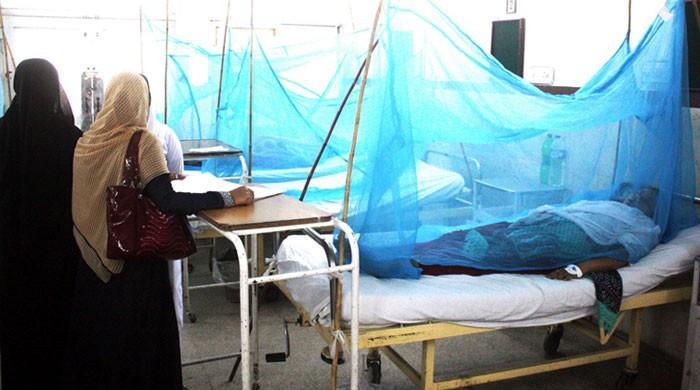 ملک بھر میں ڈینگی بخار سر اٹھانے لگا، کراچی میں سب سے زیادہ کیسز رپورٹ