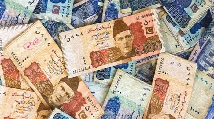 2024 تک ملک کا مجموعی قرض 45 ہزار 573 ارب روپے ہو جائے گا