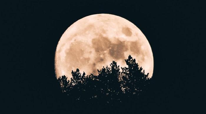 20 نئے چاند دریافت