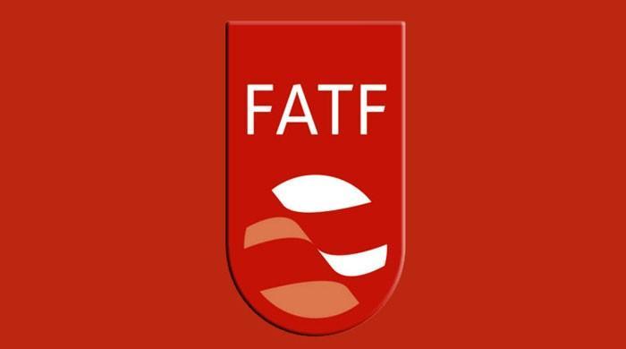 ایف اے ٹی ایف اجلاس میں شرکت کیلئے پاکستانی وفد فرانس روانہ