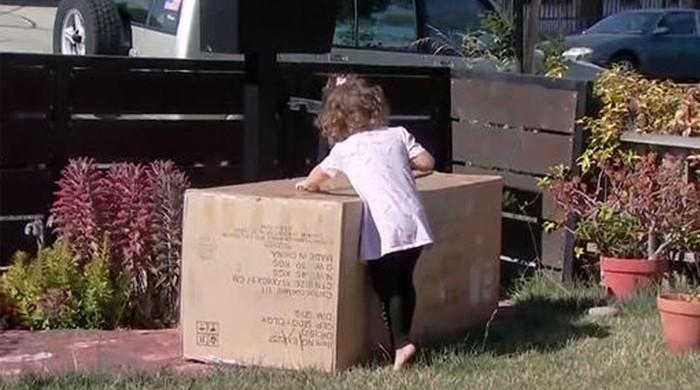 دو سالہ ننھی بچی کی آن لائن شاپنگ