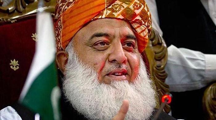 'مولانا فضل الرحمان دھرنا نہیں دیں گے'