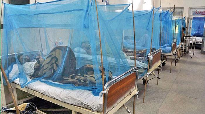 کراچی میں ڈینگی سے متاثرہ مزید 2 مریض دم توڑ گئے
