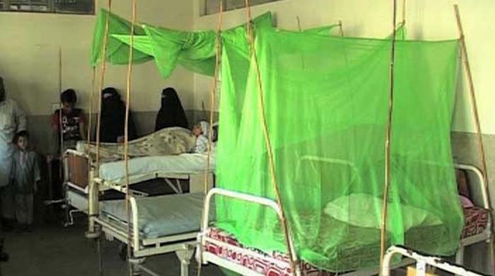 کراچی میں ڈینگی سے مزید دو خواتین انتقال کر گئیں، تعداد  39 تک جا پہنچی