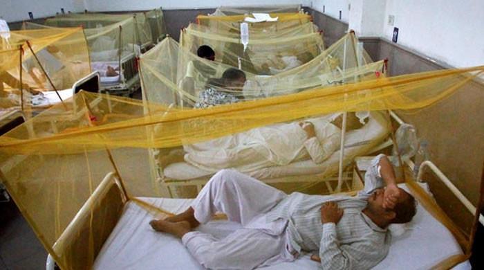 کراچی میں ڈینگی سے مزید 2 افراد جاں بحق، رواں سال سندھ میں ہلاکتیں 45 ہوگئیں
