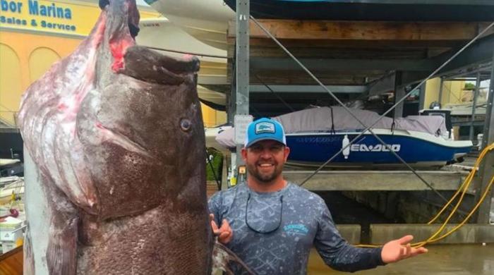158 کلو وزنی 50 سال کی عمر رسیدہ مچھلی ہاتھ لگ گئی