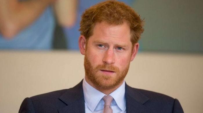 'برگر کنگ' کی برطانوی شہزادے ہیری کو ملازمت کی پیشکش