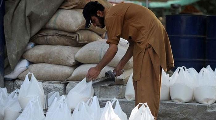 گندم کا بحران کیوں؟