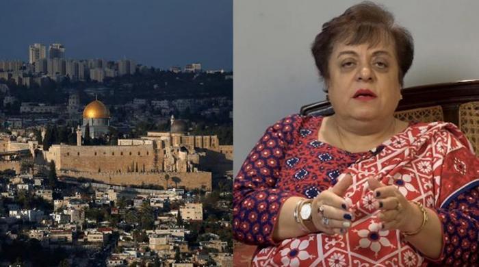 فلسطین پر شیریں مزاری کی صائب رائے