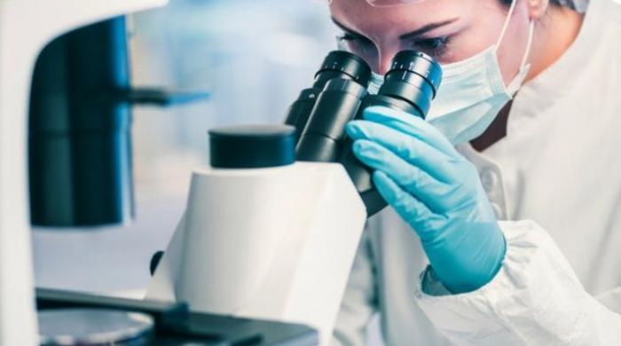 مصنوعی ذہانت سے تیار اینٹی بائیوٹک سے انتہائی خطرناک بیکٹیریا کا خاتمہ ممکن