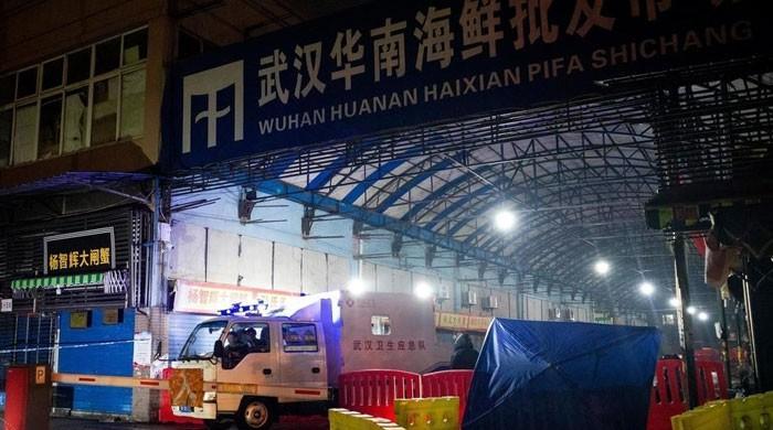 کورونا وائرس : چین نے جنگلی جانوروں کی تجارت پر مکمل پابندی لگادی