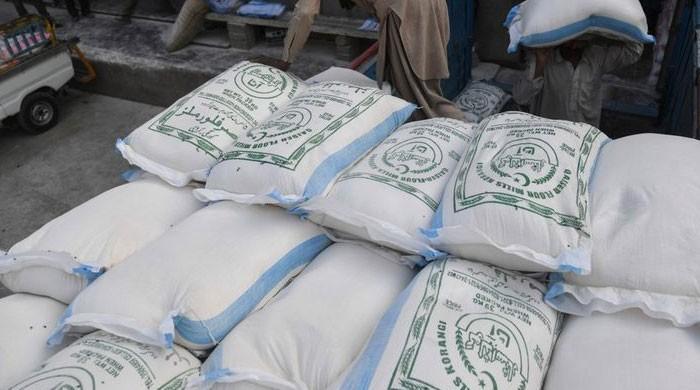 'آٹا بحران کی تحقیقاتی کمیٹی جانبدار ہے، پنجاب میں آٹا مافیا کو بچایا جا رہا ہے'