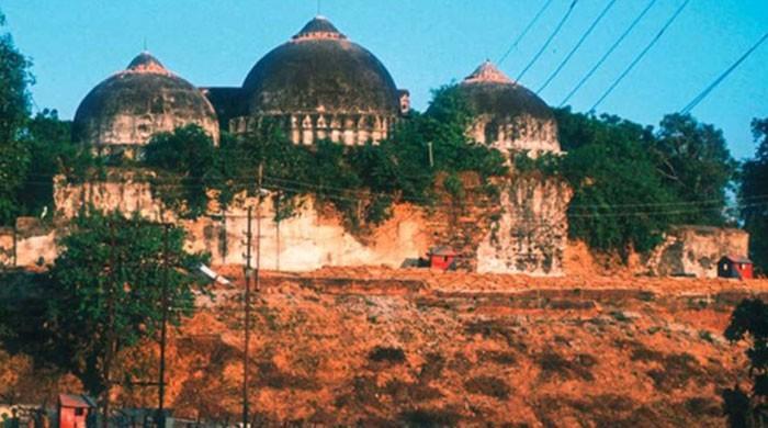 پاکستان کی بابری مسجد کے مقام پر مندر کی تعمیر کے آغاز کی مذمت