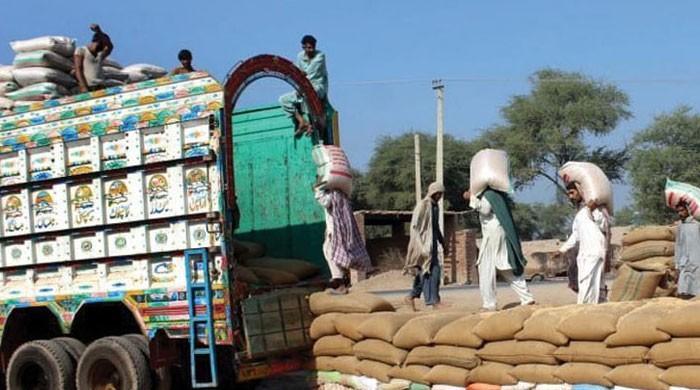 پنجاب کے تمام اضلاع میں آبادی کی بنیاد پر گندم کوٹے کا اجرا شروع