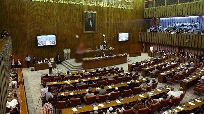 سینیٹ نے بلوچستان اسمبلی کی نشستوں میں اضافے کا آئینی ترمیم کا بل منظور کرلیا