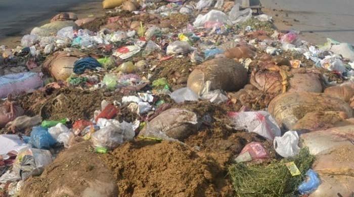عید قرباں پر آلودہ ماحول کے باعث وبائی امراض پھیلنے کا خدشہ