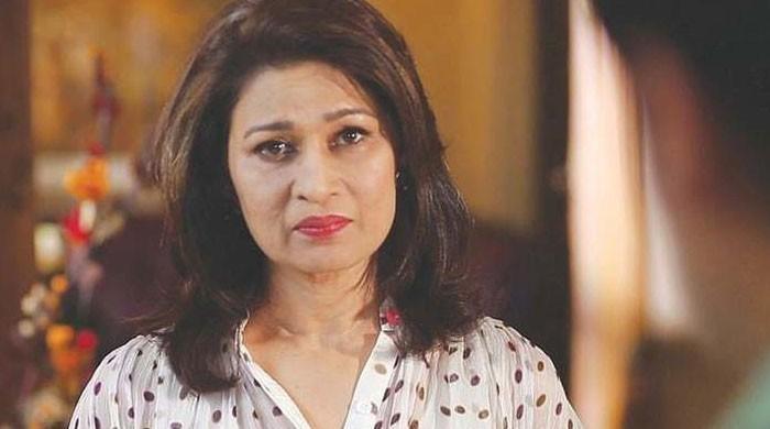 اداکارہ نائلہ جعفری کے گھر پر نامعلوم افراد کا حملہ